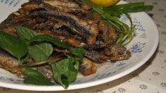 Tavada Hamsi Balık Kızartması Tarifi