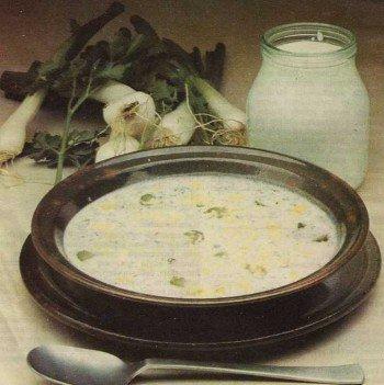 yogurt corbasi